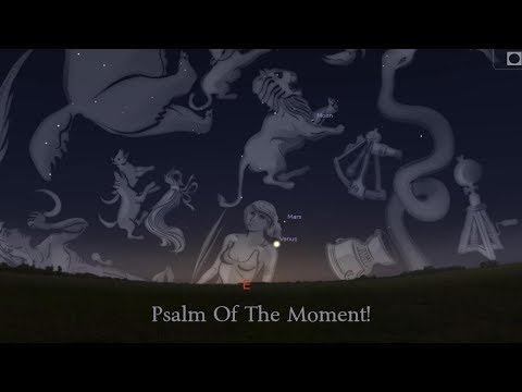 PSALM OF THE MOMENT vol. 5 - A Study in the Book of Psalms!