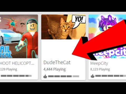 DUDE THE CAT HAS HIS OWN ROBLOX GAME!!