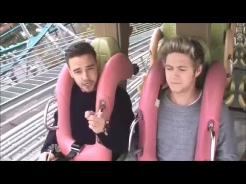 Niall Is The Most Clever In One Direction || Roller-Coaster Interview
