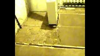 як зробити підлогу з глини