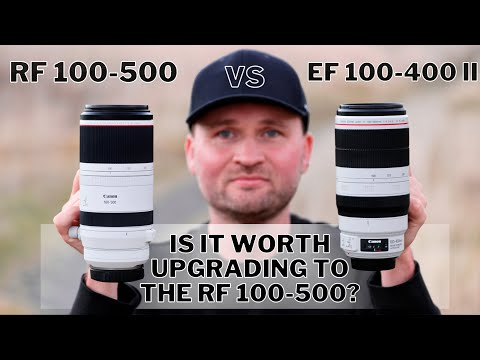 Canon RF 100-500 vs EF 100-400 II   Is it WORTH UPGRADING to the RF 100-500? Bird Photography Review