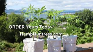 Hemp Huntress - Grow It From Home Unboxing
