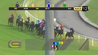 Vidéo de la course PMU PRIX CLASS 1
