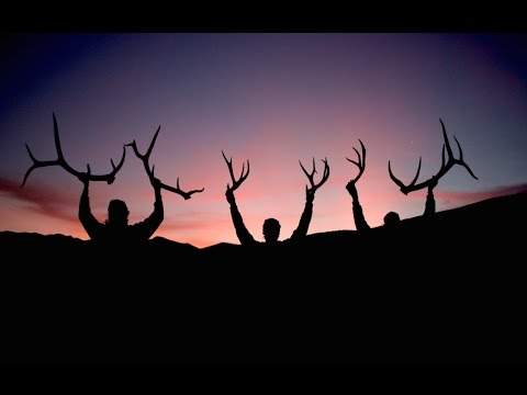 Finding Deer And Elk Sheds Shedtour Epsiode 1 Youtube