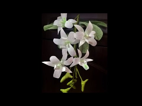 DIY | How To Make White Dendrobium Orchids Paper Flowers From Crepe Paper -Craft Tutorial | Flowers