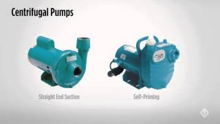 centrifugal pumps the basics