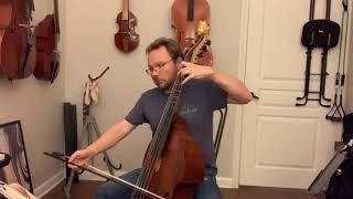 DBS Meet the Orchestra:  Episode 5 Christopher Phillpott, Viola da Gamba