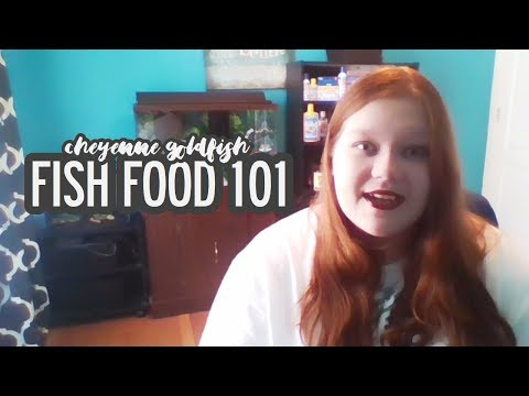Fish Food 101 // Cheyenne Goldfish