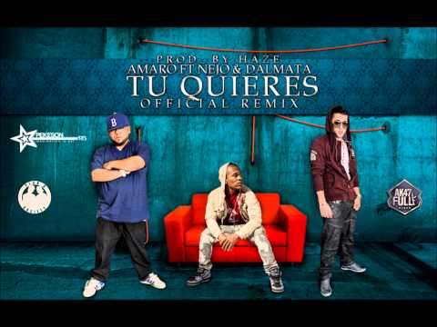 Ñejo Y Dalmata Ft Amaro. Tu Quieres (Official Remix)
