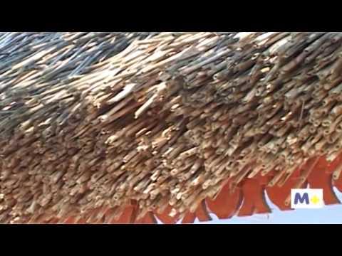 29 мар 2013. Вилково было основан как село липованское в 1746 г. Староверами липованами, которые. Дома построены на искусственных островах из ила, вместо улиц там каналы, которые местные. Buy for 20 tokens.