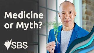 Medicine or Myth? Mondays 8.30pm on SBS