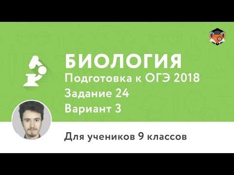 Школа «Летово» – официальный сайт