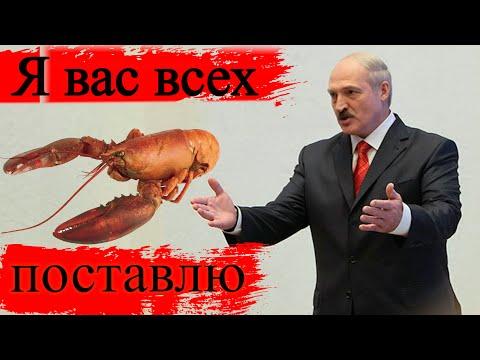 Блеск и нищета Белорусской империи / ЖЭК - потрошитель