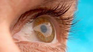 Hopes stem cells may offer cure for age related blindness
