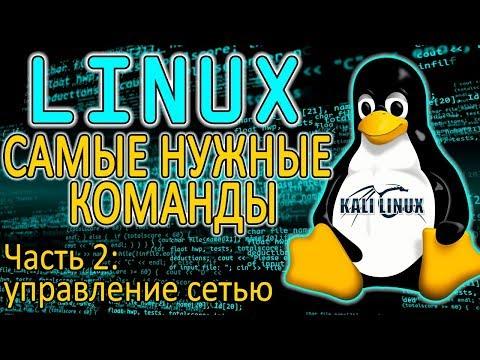 Основы Linux. Как управлять сетью