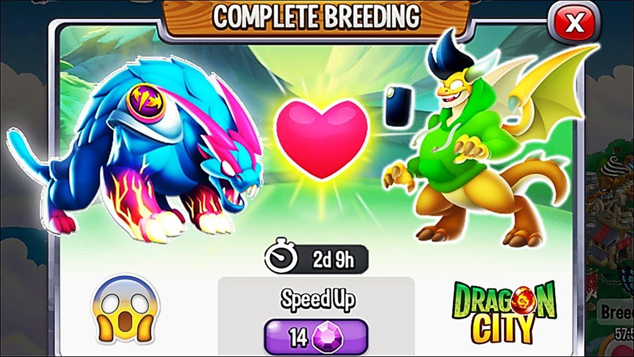 Download Dragon City: Mr Beast Dragon vs Preston Dragon [EXCLUSIVE BREEDING] 😱