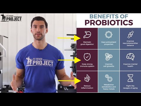 Probiotics Benefits For Weight Loss & Overall Health