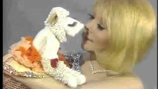 Cherrill Rae with Lamb Chop and Shari Lewis