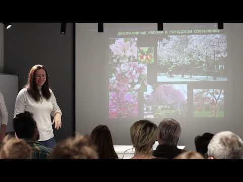 Видео: Доклад специалиста по озеленению Елены Емельяновой в ЦК