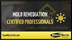 Mold Remediation Certified Professionals - Jacksonville, FL - MicroTech
