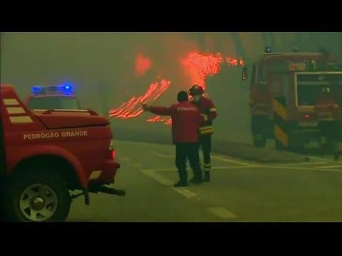 Löschhilfe aus Europa: Bisher 62 Tote bei Waldbränden in Portugal