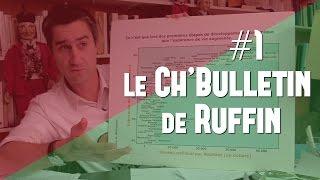 #1 LE BULLETIN DE RUFFIN : MON BUREAU, LES HIRONDELLES, CASSEROLES & AVS