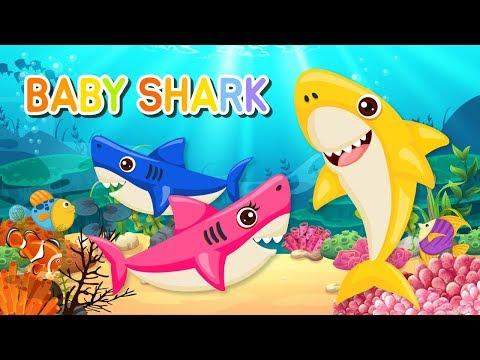 Baby Shark Song   The Shark Family   Animal Songs   Nursery Rhymes & Kids Songs