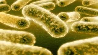 ☞ 9 Remedios caseros para la gonorrea