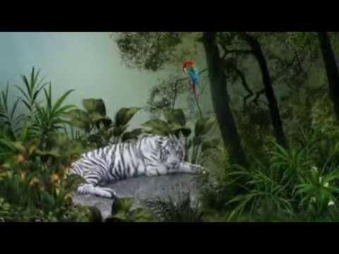 Awesome Jungle Beat Techno Instrumental