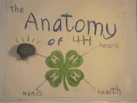 The Anatomy of 4-H: What 4-H Means to Me (2010)