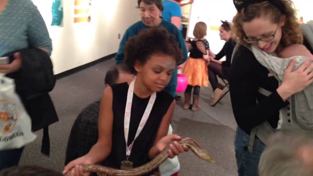 Download 2914-10-26 Holding a Legless Lizard @ AA Museum of Natural