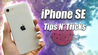 iPhone SE (2020) Hidden Features!