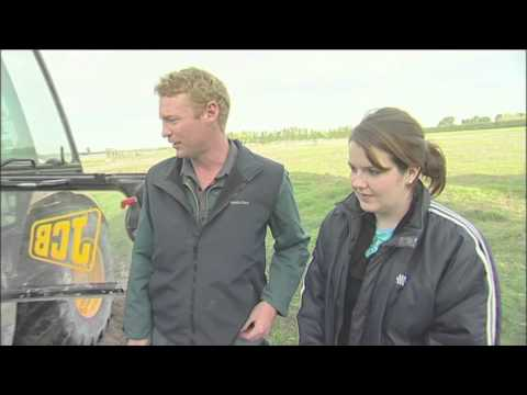 Dairy Farming: Career Information