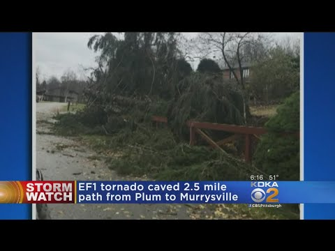 NWS Confirms EF1 Tornado In Western Pennsylvania