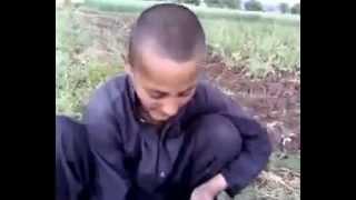 bakhti pakistan pashto funny video urdu to pashto amazing translate