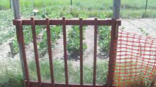 Building A Gate For The Garden