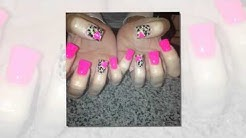 Nail Spa 27001 US Highway 19 N Clearwater Florida 33761 (1529)