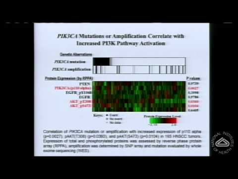 Targeting Oncogenic Pathways in Head and Neck Cancer