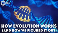 How Evolution Works (And How We Figured It Out)