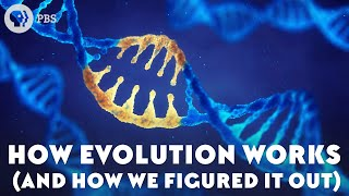 how evolution works and how we figured it out