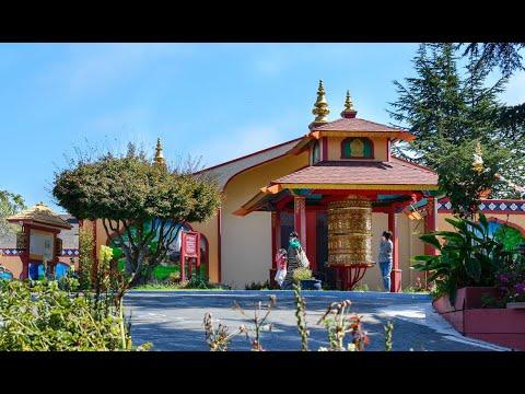 Tibetan New Year Celebration At Gyuto Foundation 2019