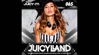 DJ Juicy M JuicyLand 65