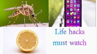 Life hacks    Lemon hacks    mosquito hack    phone hack    malayalam👌💯
