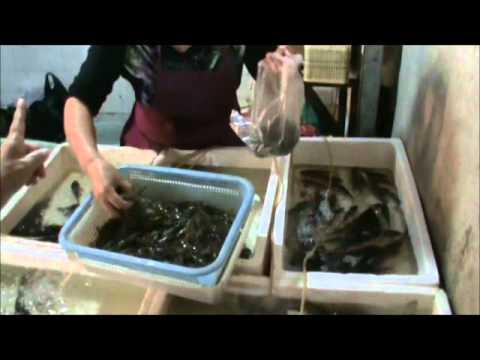 Shanghai Food - Fresh Food Market, Seafood
