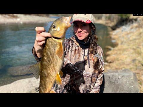 Catch & Cook Her First SUCKER FISH (SPRING RUN)