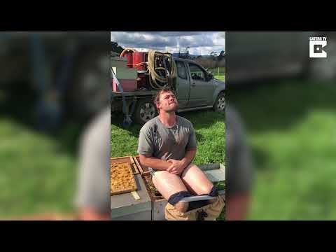 Beekeeper Drops Trousers To Sit On Bee Swarm