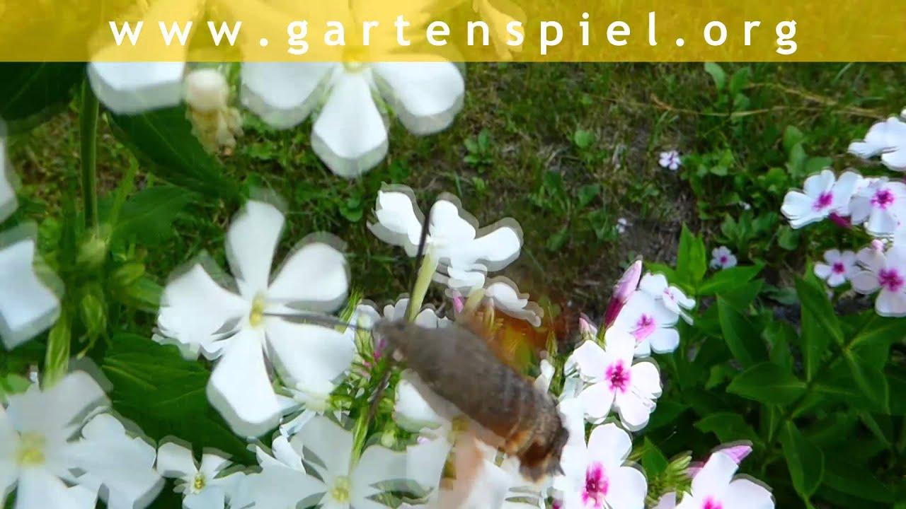 Gartenspiel