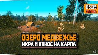 Ловля Карпов на Медвежьем озере Русская Рыбалка 4