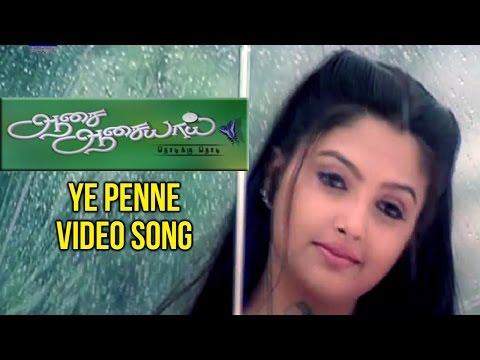 Aasai Aasaiyai Tamil Movie  Ye Penne  Song  Jiiva  Sharmelee  Mani Sharma