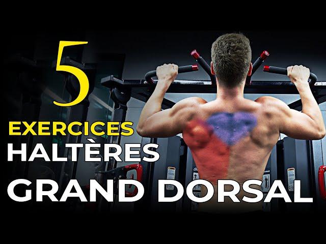 5 EXERCICES HALTÈRES POUR LE GRAND DORSAL EN MUSCULATION